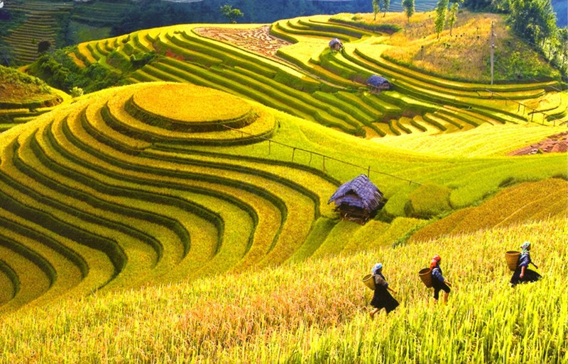 North Vietnam Travel Guide