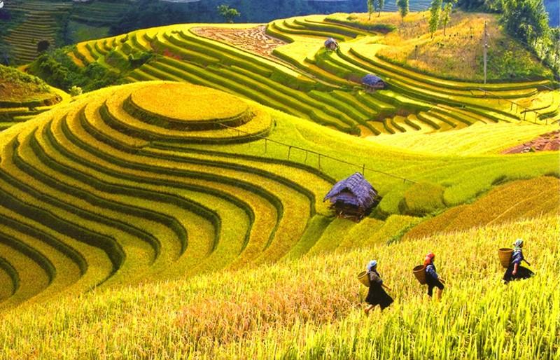 North Vietnam Travel Guide